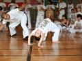Capoeira_JR8A0023_Kati_Bruder