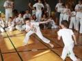 Capoeira_JR8A0350_Kati_Bruder