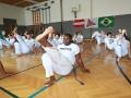 Capoeira_JR8A9261_Kati_Bruder